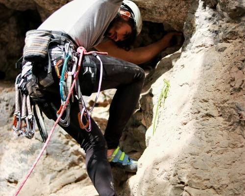 TRT — работа в полной гармонии с природой …